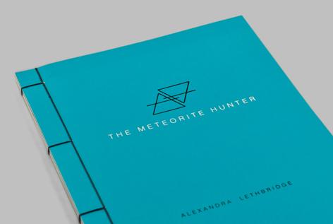 meteorite_hunter_angle_cover